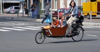 porte bébé vélo ou remorque à vélo-